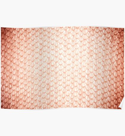 Sepia fluffy knitted fabric texture Poster