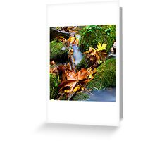 A Touch Of Fall Greeting Card