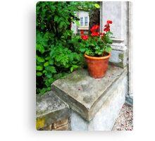 Pot of Geraniums on Stoop Canvas Print