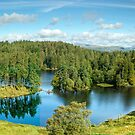 A Panoramic View of Tarn Hows by Jamie  Green