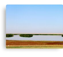The Lake Bushes Canvas Print