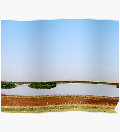 The Lake Bushes Poster