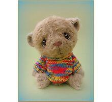 Chepcher - Handmade bears from Teddy Bear Orphans Photographic Print