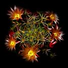 Flowers Of Flames by Atılım GÜLŞEN