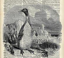 Penguin over old book page vintage illustration by DictionaryArt