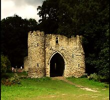 Behind The Keep - Roundhay Park, Leeds by angelimagine