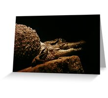 Crock - Crocodile  Greeting Card