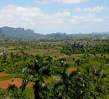 Vinales Valley, the Cuban countryside by krista121
