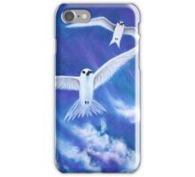 Flying High Fairy Terns iPhone Case/Skin