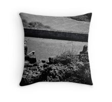 The evolution of the written word... Throw Pillow