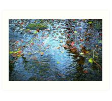 Jewels of the Fall on Water Art Print