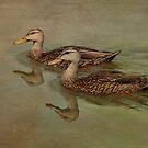 Floating On By by Deborah  Benoit