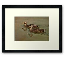 Floating On By Framed Print