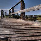 Wooden path by Marta69