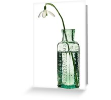 Rescued Snowdrop Greeting Card
