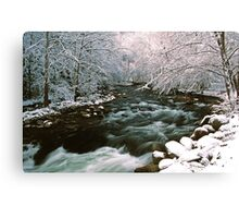 MIDDLE PRONG LITTLE RIVER,WINTER Canvas Print