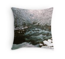 MIDDLE PRONG LITTLE RIVER,WINTER Throw Pillow