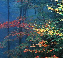 AUTUMN MIST by Chuck Wickham