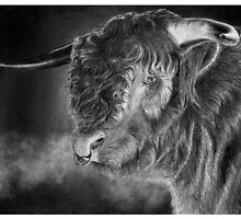 Antony the bull by Ronny Hart