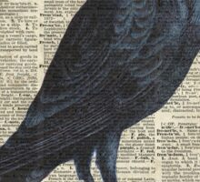 Crow on dictionary book page Sticker