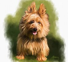 Cairn West Highland Terrier Pet Portrait by Michael Greenaway