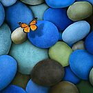 Blue Stones and Butterfly by jsalozzo