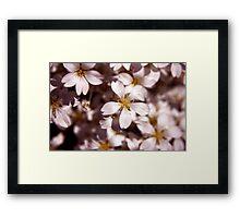 White-ness Framed Print