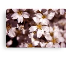 White-ness Canvas Print