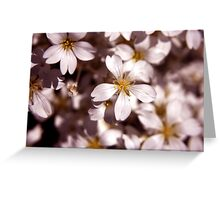 White-ness Greeting Card