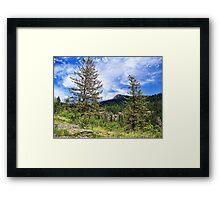 Hall Peak (Bob Marshall Wilderness, Montana, USA) Framed Print