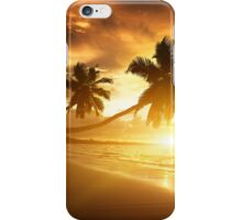 swings romantic surfing surf water ocean sea miami mexico partying fun party fun holidays crazy friend friends chill chilling family memories funtimes iPhone Case/Skin