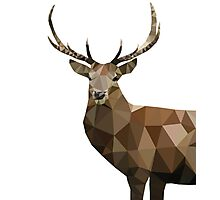 Low Poly Deer Photographic Print