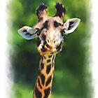 Wildlife African Giraffe Portrait by Michael Greenaway