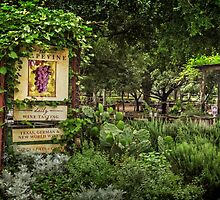 The Grapevine at Gruene, Texas by LarryB007
