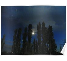 Moon and trees at night, Payette County, ID, USA Poster
