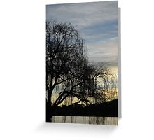 sombre willow Greeting Card