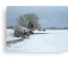 Snowy Trees and Landscape Canvas Print