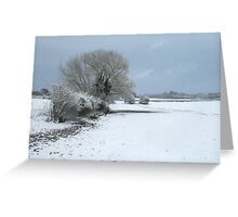 Snowy Trees and Landscape Greeting Card