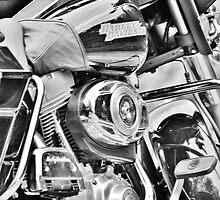 Harley Davidson by dawncox