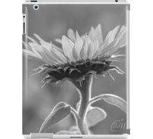 Sundancer iPad Case/Skin