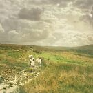 Walking Companions in Cumbria by patrixpix