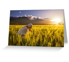 Girl in a golden field Greeting Card