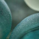 Aqua Stones by Sea-Change