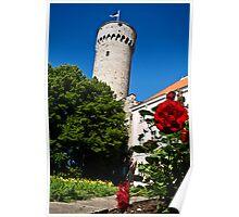 Toompea, Pikk Hermann Poster