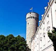 Toompea, Tallinn by tutulele