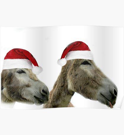 Wonkey Donkey Wishes Poster