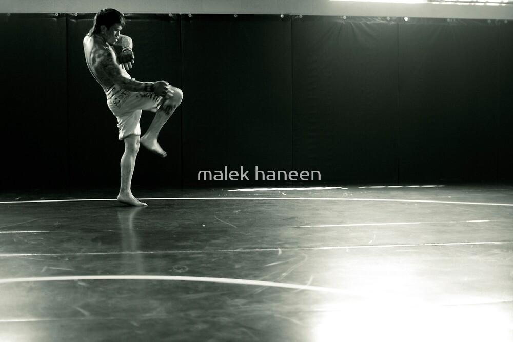 Untitled by malek haneen
