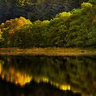 Lubnaig Reflections (2) by Karl Williams