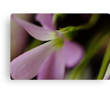 Flower Macro Canvas Print