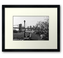 Dumbo park Brooklyn Framed Print